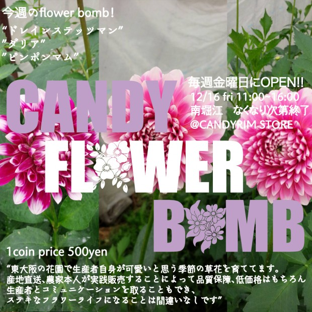 candy-f-b-1216